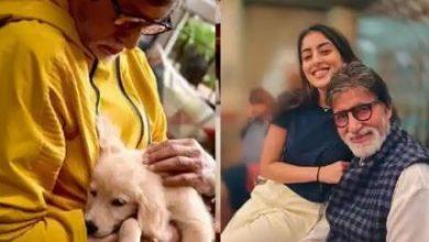 Photo of अमिताभ बच्चन के क्यूट को-स्टार को देखकर फिदा हुईं नव्या नवेली बोलीं-इसे घर लाना, फोटो वायरल